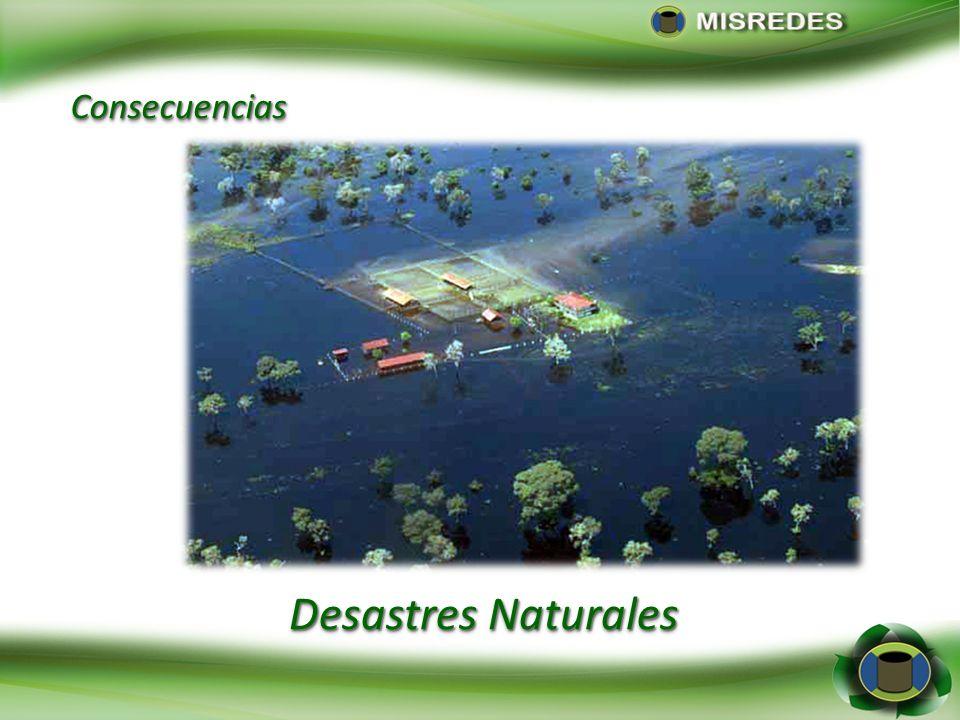 Consecuencias Desastres Naturales