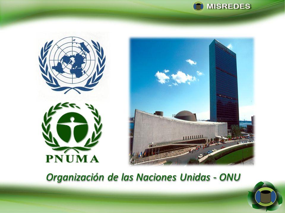 Organización de las Naciones Unidas - ONU