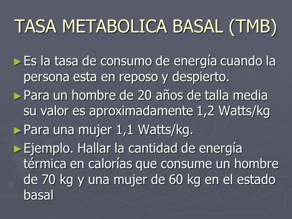 TASA METABOLICA BASAL (TMB)
