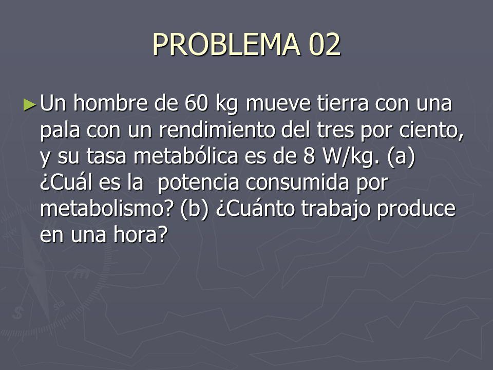 PROBLEMA 02