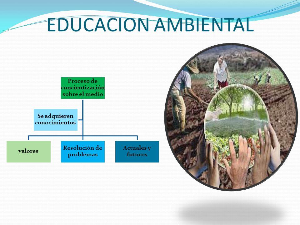 EDUCACION AMBIENTAL Proceso de concientización sobre el medio valores
