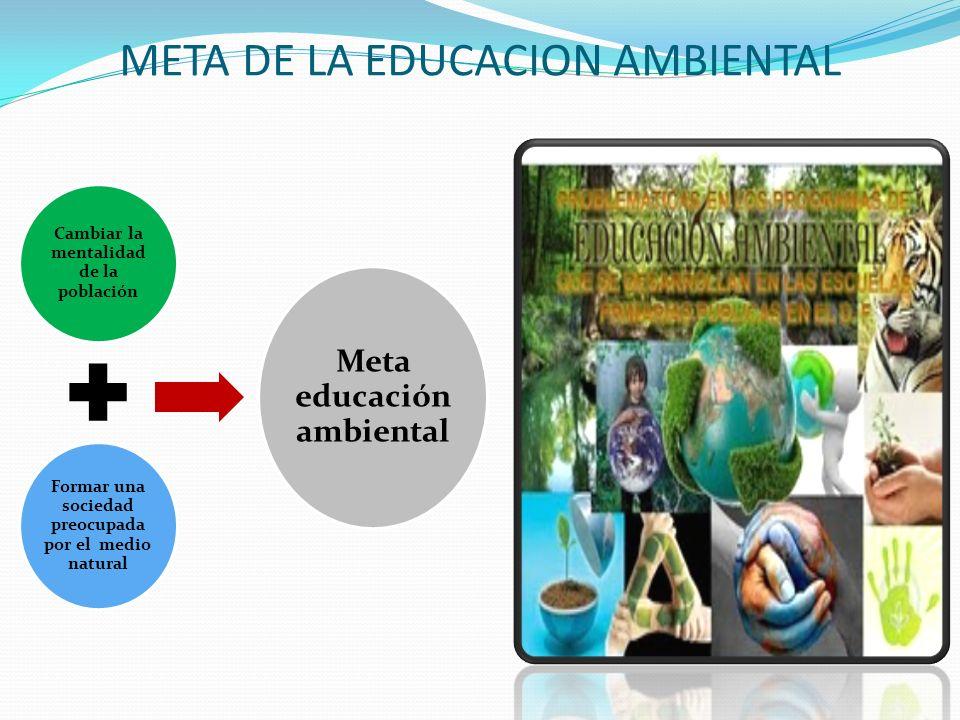META DE LA EDUCACION AMBIENTAL