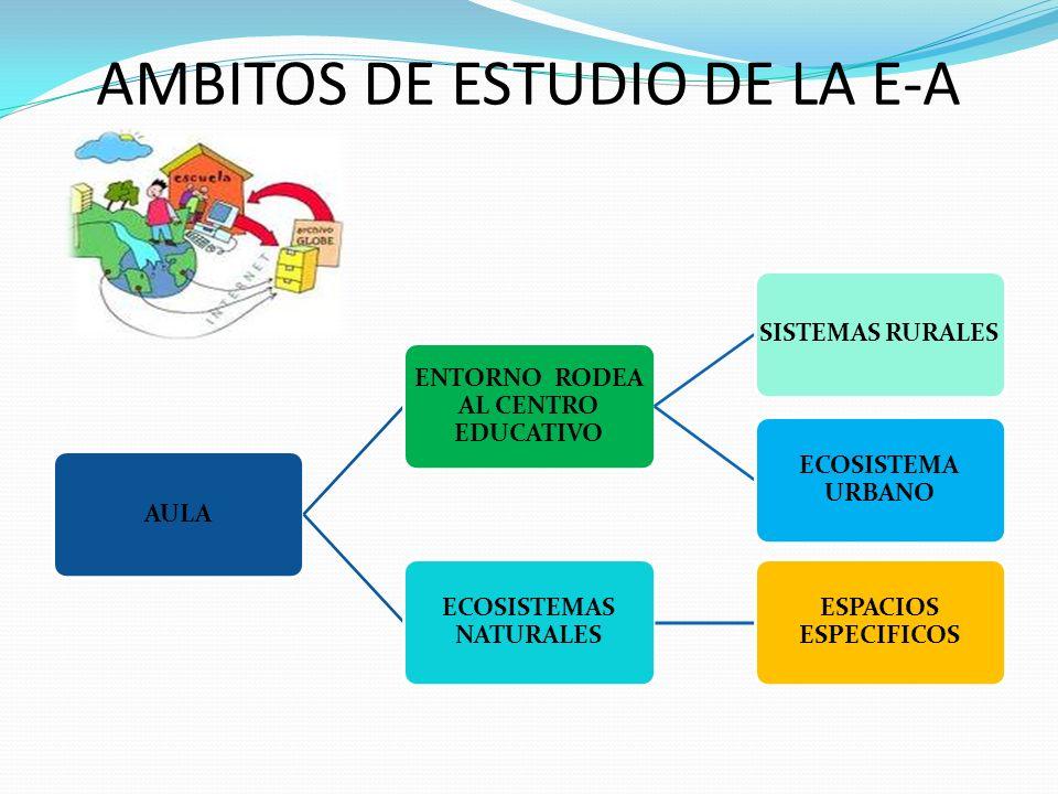 AMBITOS DE ESTUDIO DE LA E-A