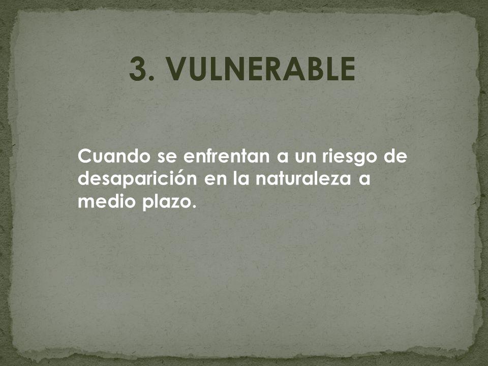 3. VULNERABLE Cuando se enfrentan a un riesgo de desaparición en la naturaleza a medio plazo.