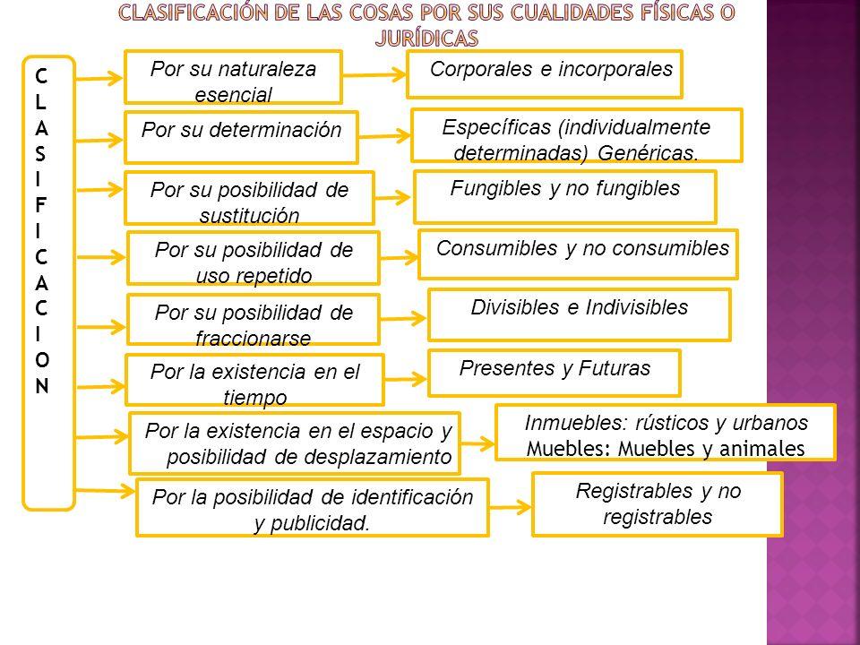 Clasificación de las Cosas por sus cualidades físicas o jurídicas