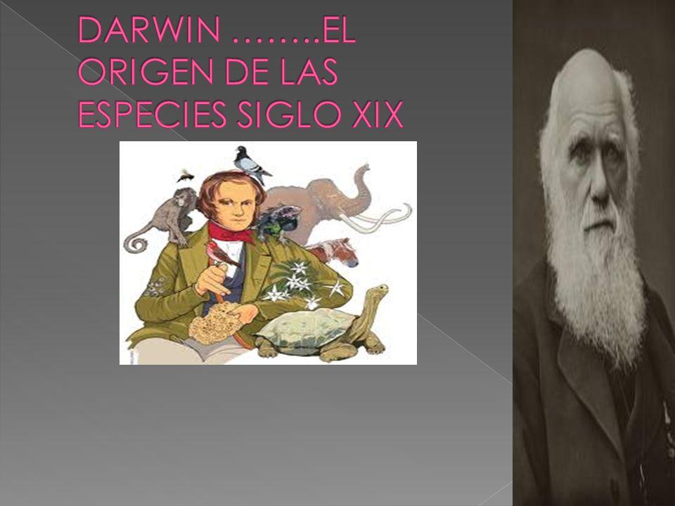 DARWIN ……..EL ORIGEN DE LAS ESPECIES SIGLO XIX