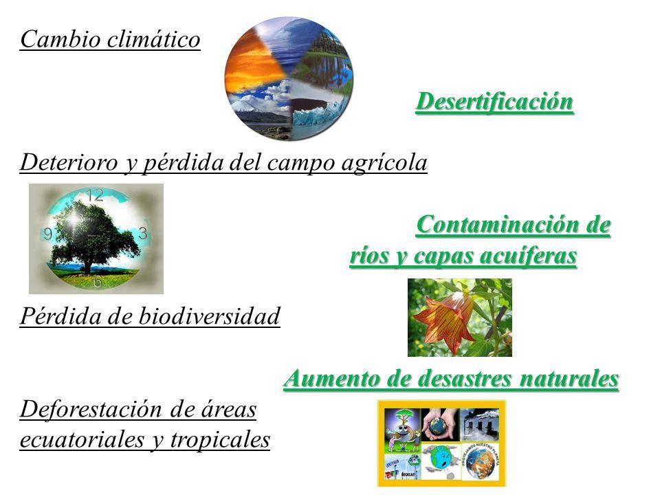 Cambio climático Desertificación. Deterioro y pérdida del campo agrícola. Contaminación de ríos y capas acuíferas.