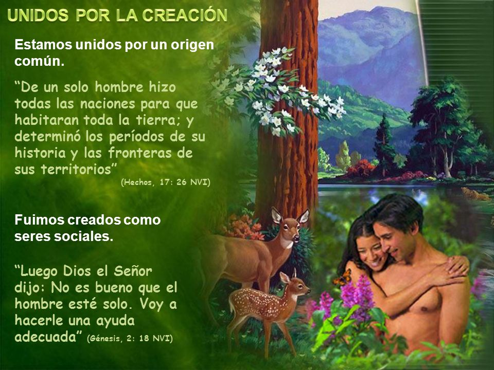 UNIDOS POR LA CREACIÓN Estamos unidos por un origen común.