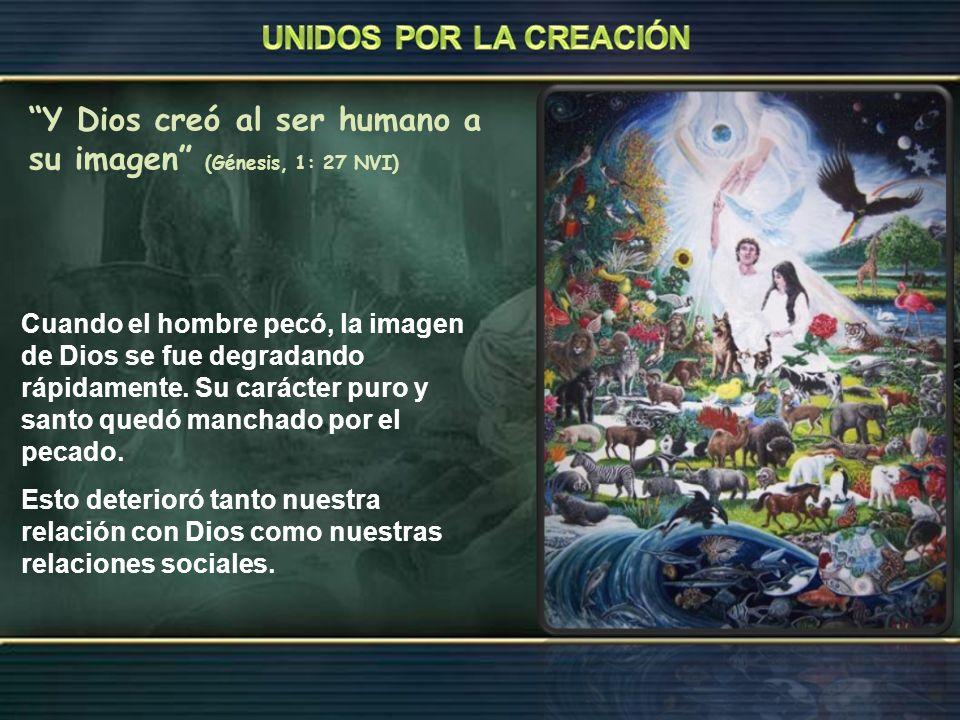 Y Dios creó al ser humano a su imagen (Génesis, 1: 27 NVI)