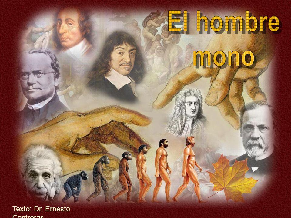 El hombre mono Texto: Dr. Ernesto Contreras