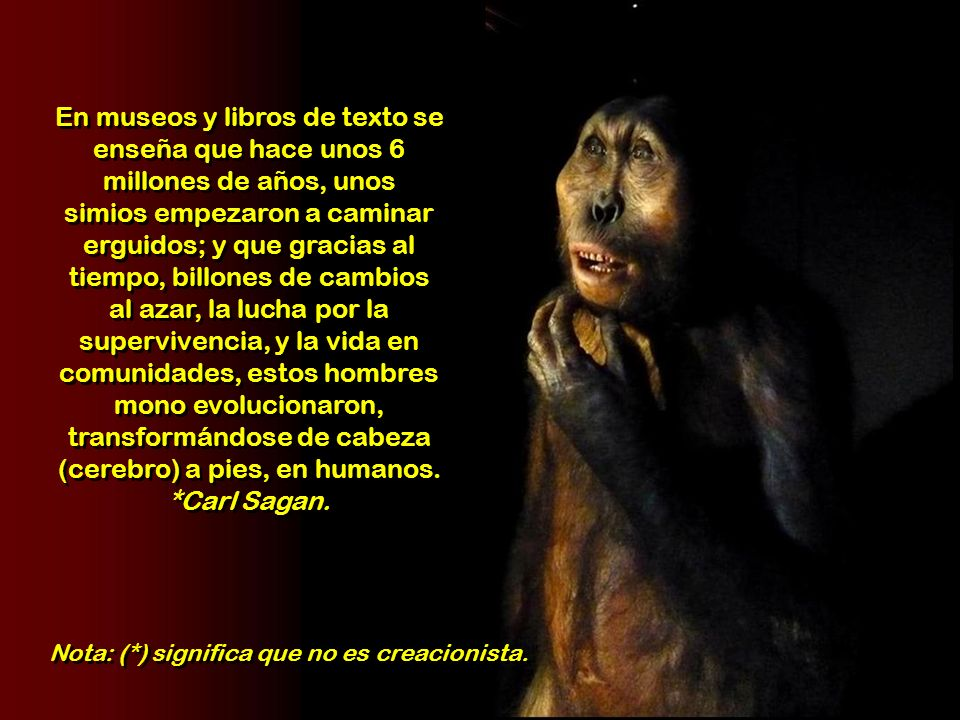 En museos y libros de texto se enseña que hace unos 6 millones de años, unos simios empezaron a caminar erguidos; y que gracias al tiempo, billones de cambios al azar, la lucha por la supervivencia, y la vida en comunidades, estos hombres mono evolucionaron, transformándose de cabeza (cerebro) a pies, en humanos. *Carl Sagan.