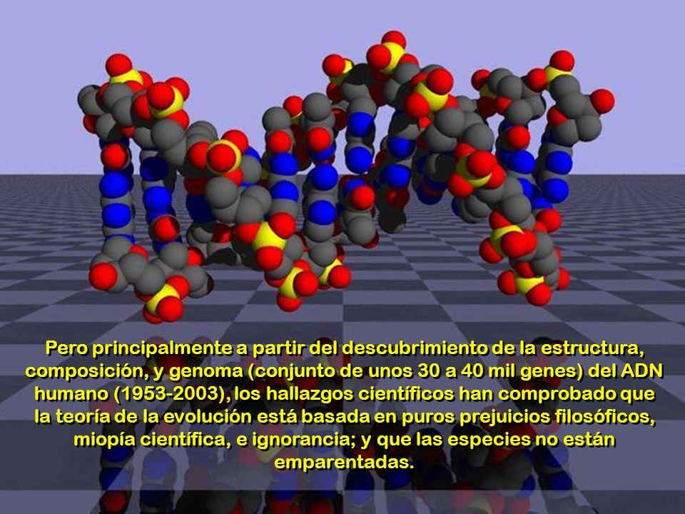 Pero principalmente a partir del descubrimiento de la estructura, composición, y genoma (conjunto de unos 30 a 40 mil genes) del ADN humano (1953-2003), los hallazgos científicos han comprobado que la teoría de la evolución está basada en puros prejuicios filosóficos, miopía científica, e ignorancia; y que las especies no están emparentadas.