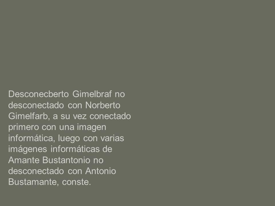 Desconecberto Gimelbraf no desconectado con Norberto Gimelfarb, a su vez conectado primero con una imagen informática, luego con varias imágenes informáticas de Amante Bustantonio no desconectado con Antonio Bustamante, conste.