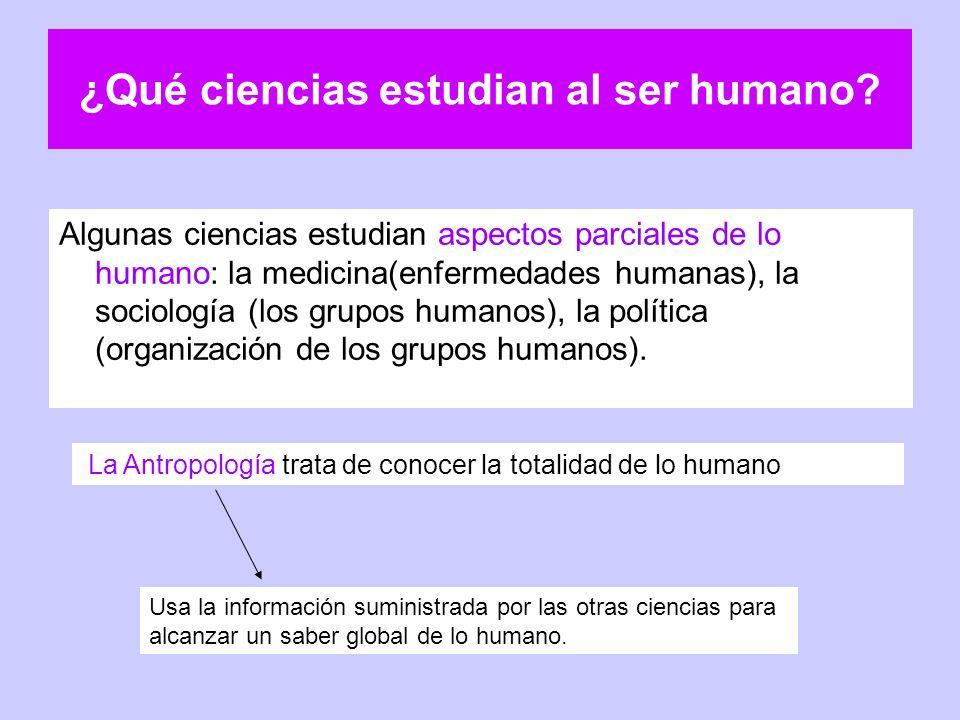 ¿Qué ciencias estudian al ser humano