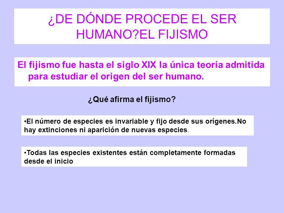 ¿DE DÓNDE PROCEDE EL SER HUMANO EL FIJISMO