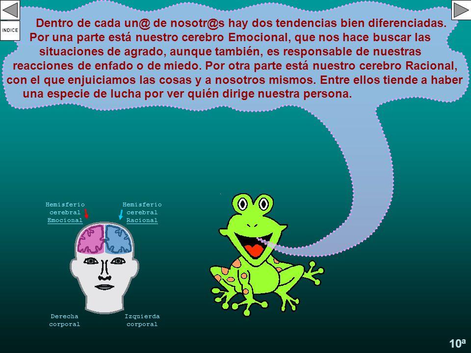 Hemisferio cerebral Emocional Hemisferio cerebral Racional