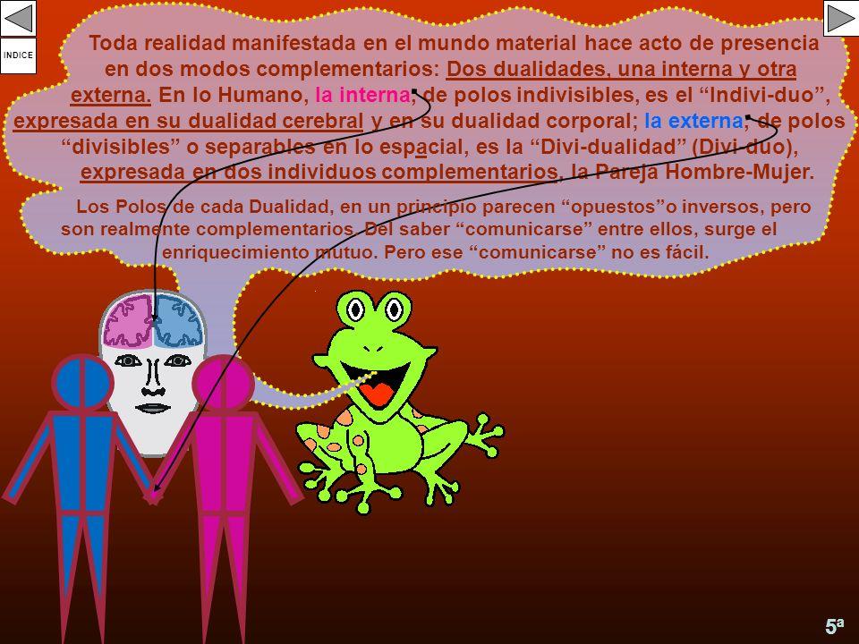 Toda realidad manifestada en el mundo material hace acto de presencia en dos modos complementarios: Dos dualidades, una interna y otra externa. En lo Humano, la interna, de polos indivisibles, es el Indivi-duo , expresada en su dualidad cerebral y en su dualidad corporal; la externa, de polos divisibles o separables en lo espacial, es la Divi-dualidad (Divi-duo), expresada en dos individuos complementarios, la Pareja Hombre-Mujer.