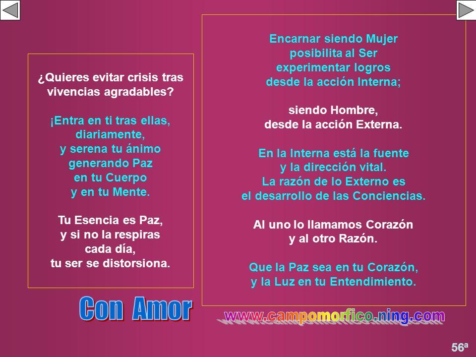Con Amor www.campomorfico.ning.com