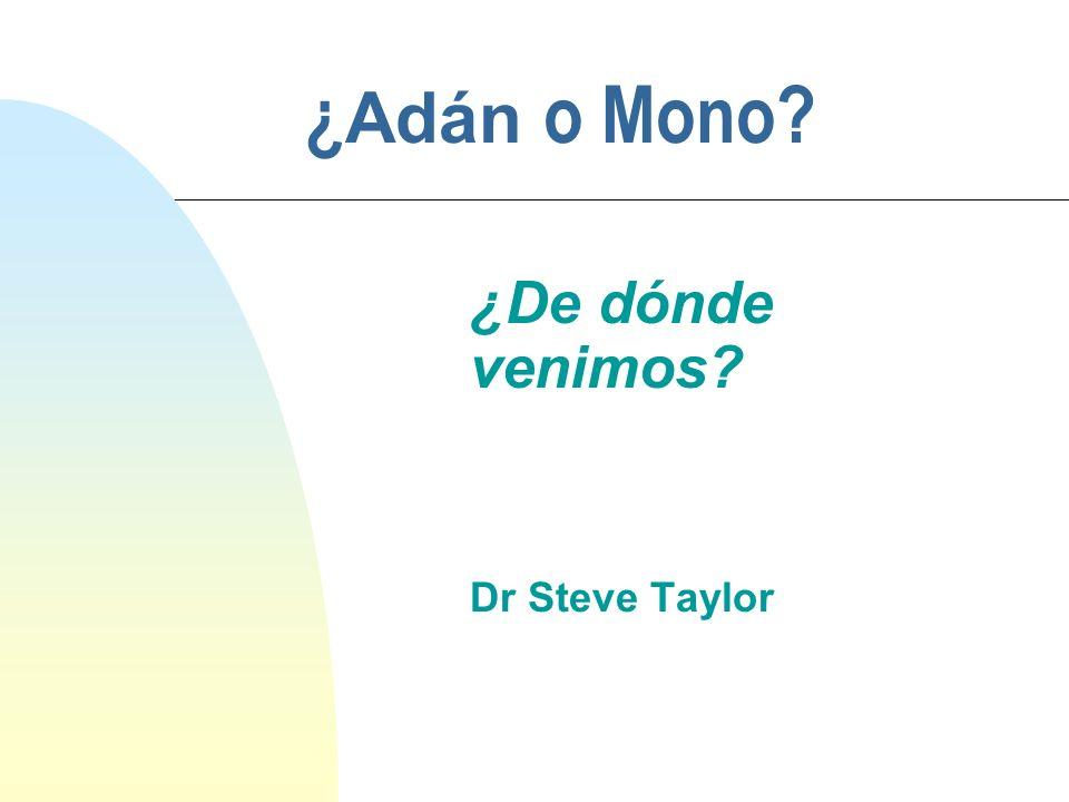 ¿De dónde venimos Dr Steve Taylor