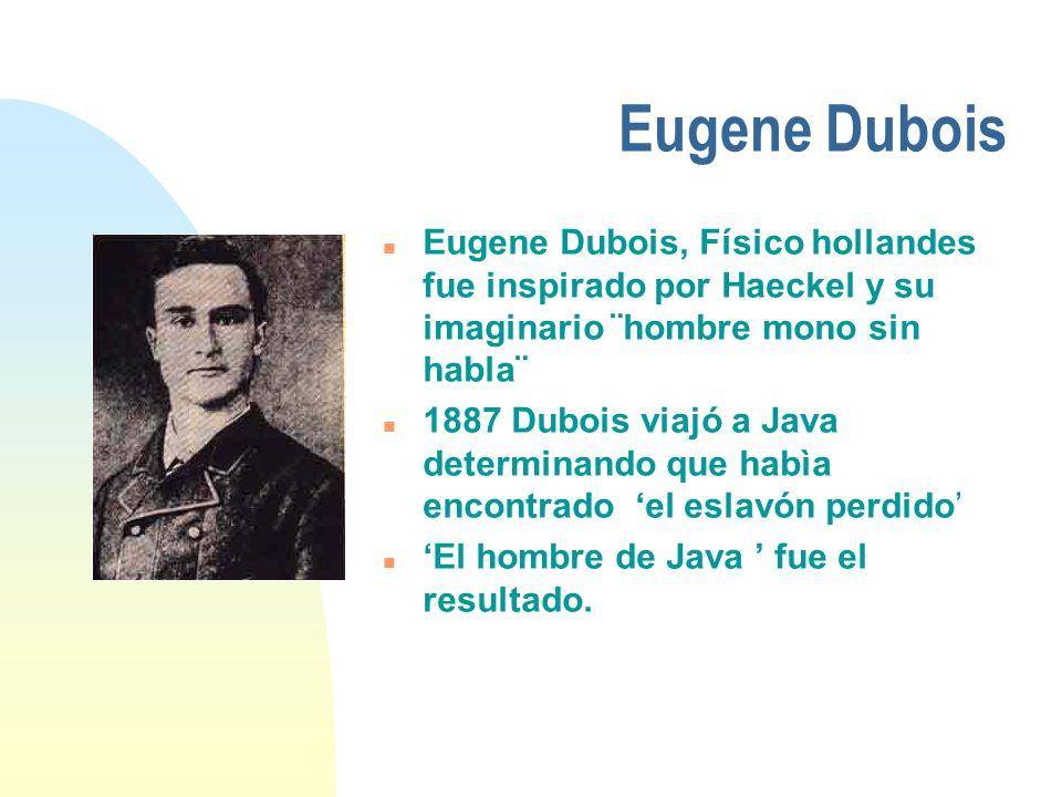 Eugene Dubois Eugene Dubois, Físico hollandes fue inspirado por Haeckel y su imaginario ¨hombre mono sin habla¨