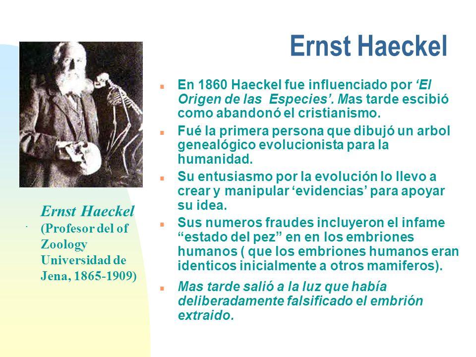 Ernst Haeckel En 1860 Haeckel fue influenciado por 'El Origen de las Especies'. Mas tarde escibió como abandonó el cristianismo.