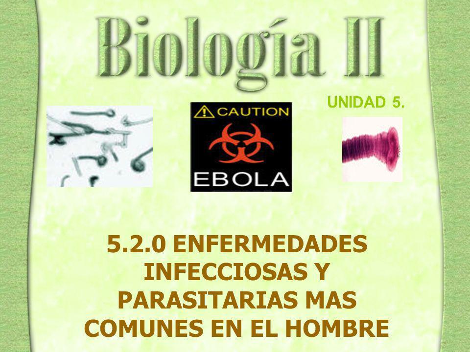 5.2.0 ENFERMEDADES INFECCIOSAS Y PARASITARIAS MAS COMUNES EN EL HOMBRE