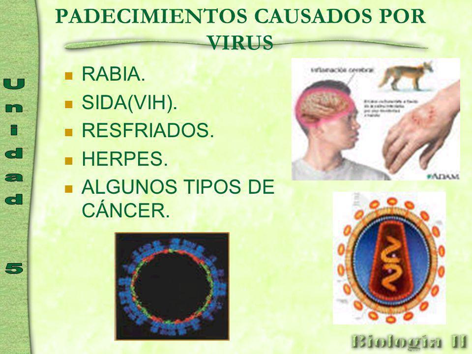PADECIMIENTOS CAUSADOS POR VIRUS