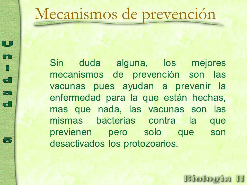 Mecanismos de prevención