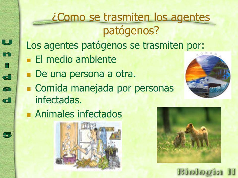¿Como se trasmiten los agentes patógenos