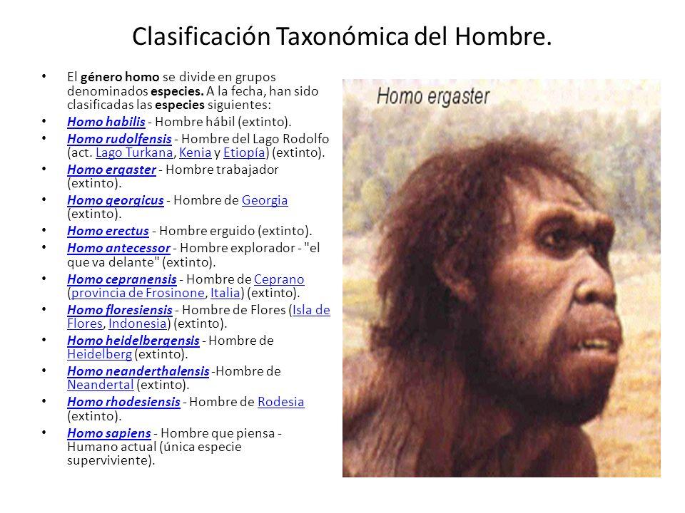Clasificación Taxonómica del Hombre.