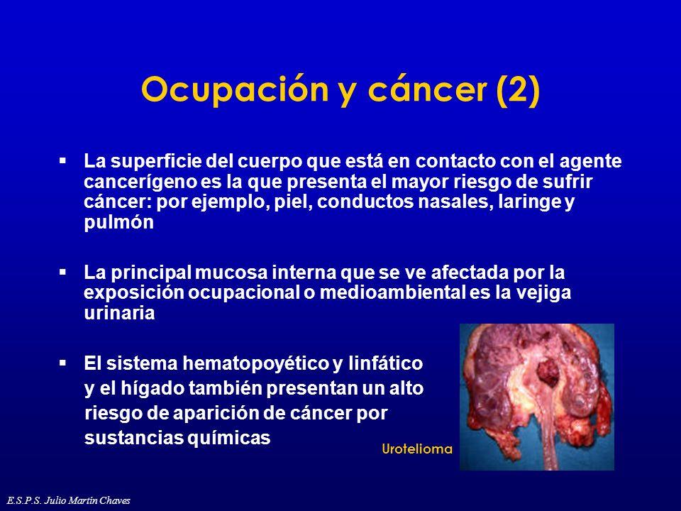 Ocupación y cáncer (2)