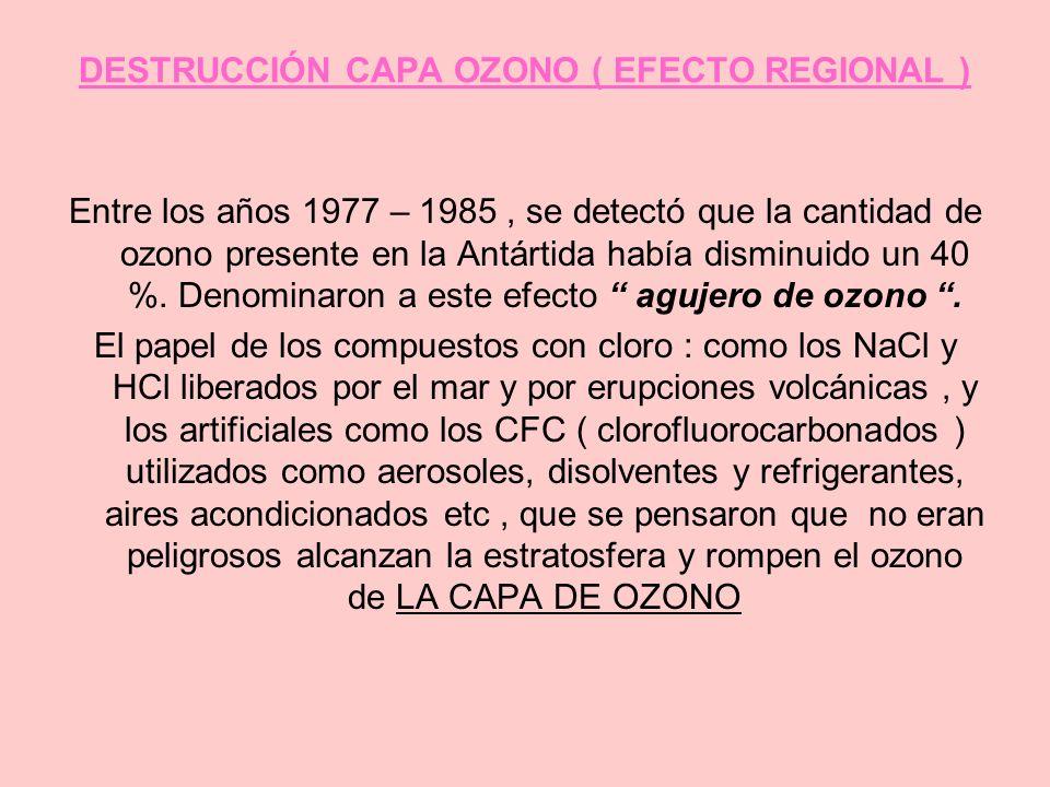 DESTRUCCIÓN CAPA OZONO ( EFECTO REGIONAL )