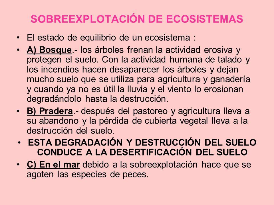 SOBREEXPLOTACIÓN DE ECOSISTEMAS