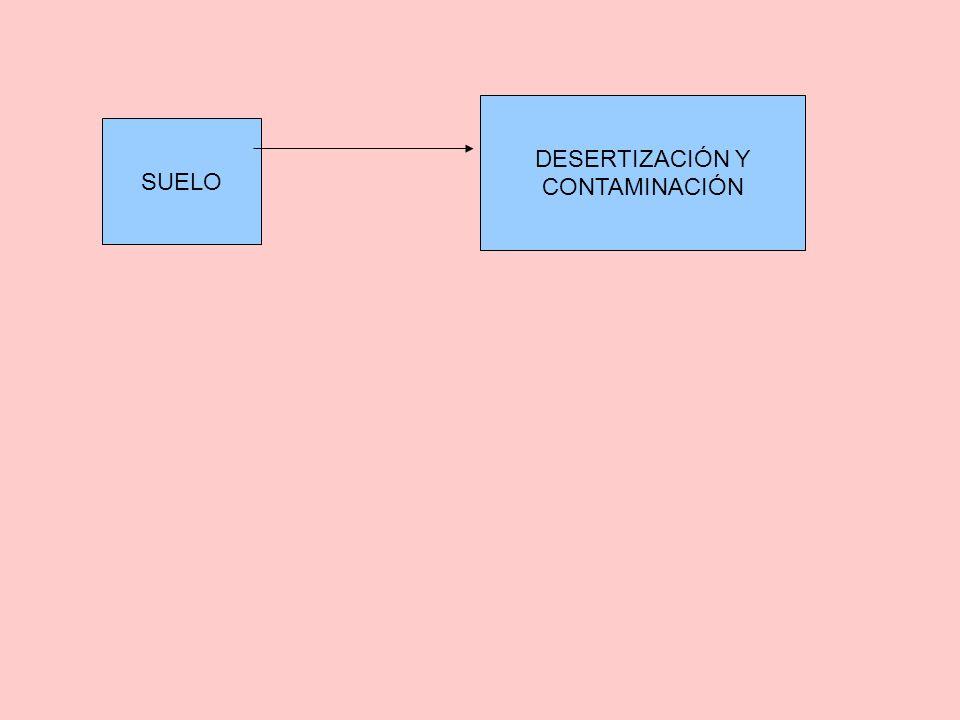 DESERTIZACIÓN Y CONTAMINACIÓN