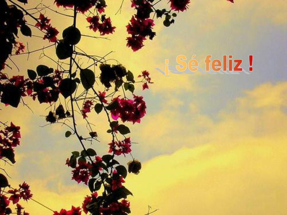 ¡ Sé feliz !