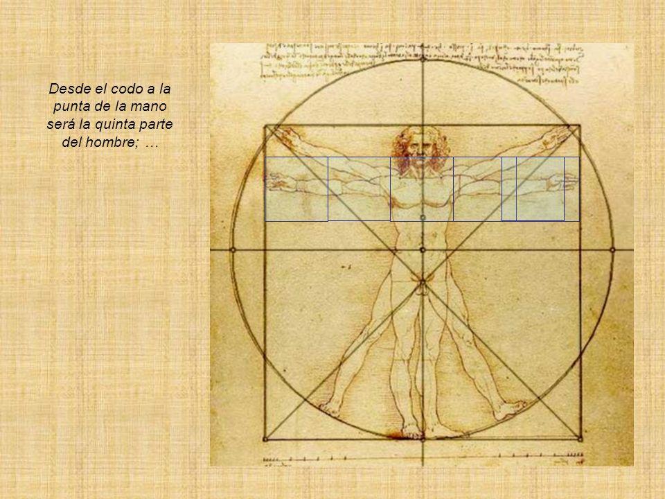 Desde el codo a la punta de la mano será la quinta parte del hombre; …