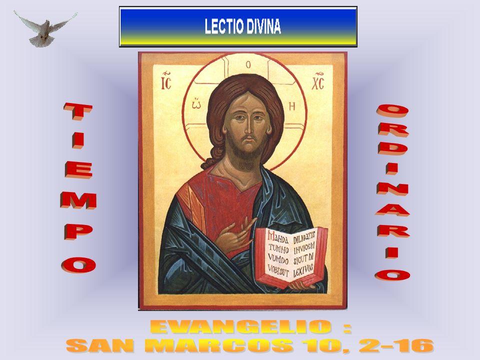 TIEMPO ORDINARIO EVANGELIO : SAN MARCOS 10, 2-16 1