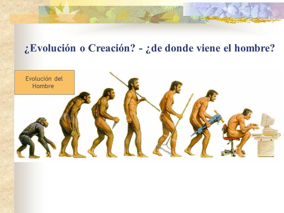 ¿Evolución o Creación - ¿de donde viene el hombre