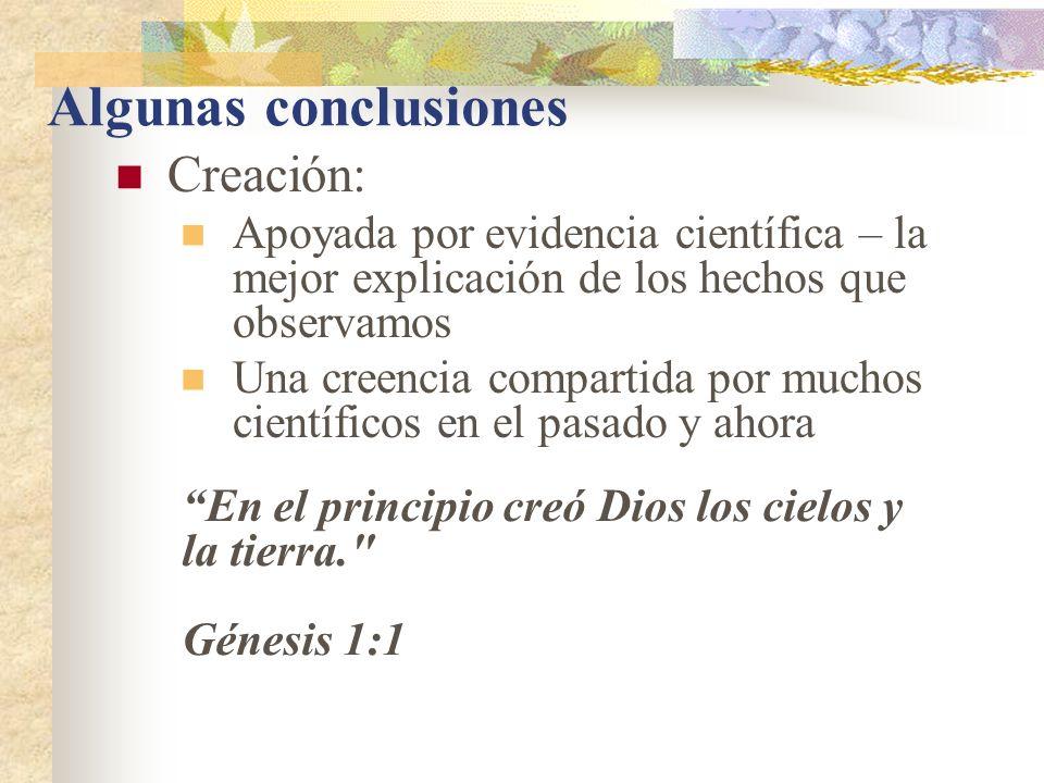 Algunas conclusiones Creación: