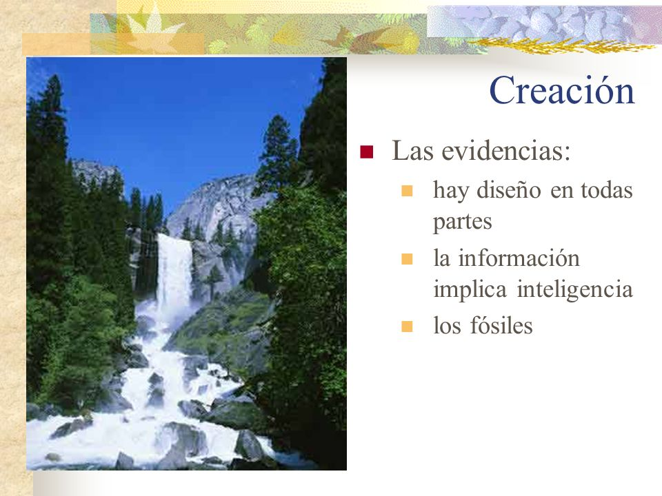 Creación Las evidencias: hay diseño en todas partes