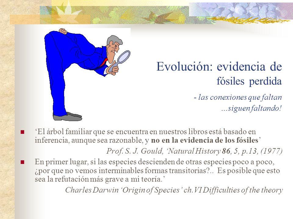 Evolución: evidencia de fósiles perdida
