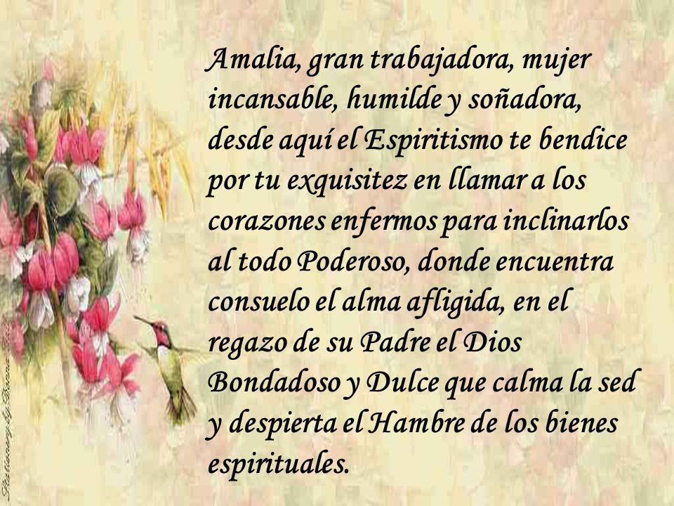 Amalia, gran trabajadora, mujer incansable, humilde y soñadora, desde aquí el Espiritismo te bendice por tu exquisitez en llamar a los corazones enfermos para inclinarlos al todo Poderoso, donde encuentra consuelo el alma afligida, en el regazo de su Padre el Dios Bondadoso y Dulce que calma la sed y despierta el Hambre de los bienes espirituales.