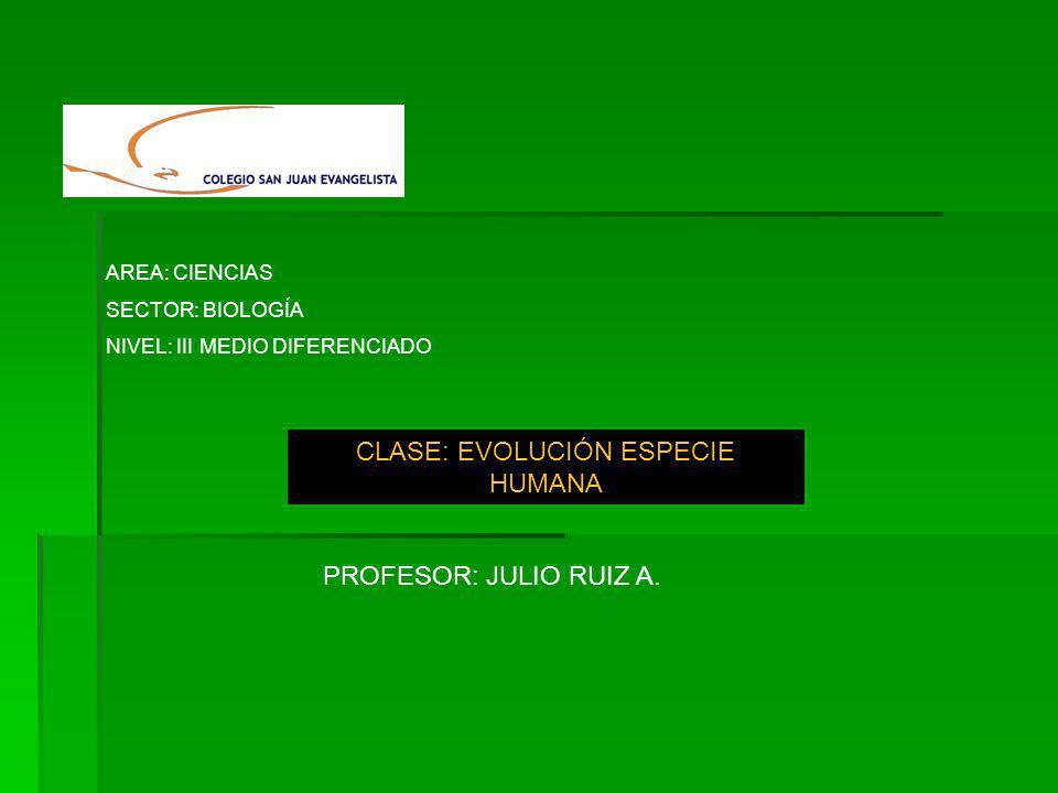 CLASE: EVOLUCIÓN ESPECIE HUMANA