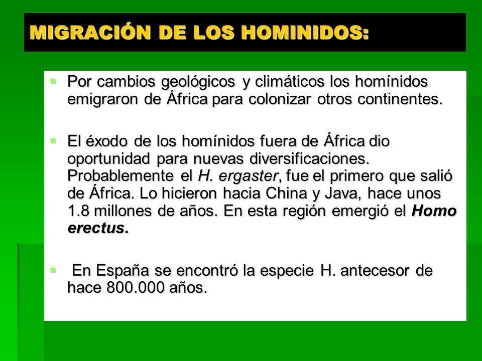 MIGRACIÓN DE LOS HOMINIDOS: