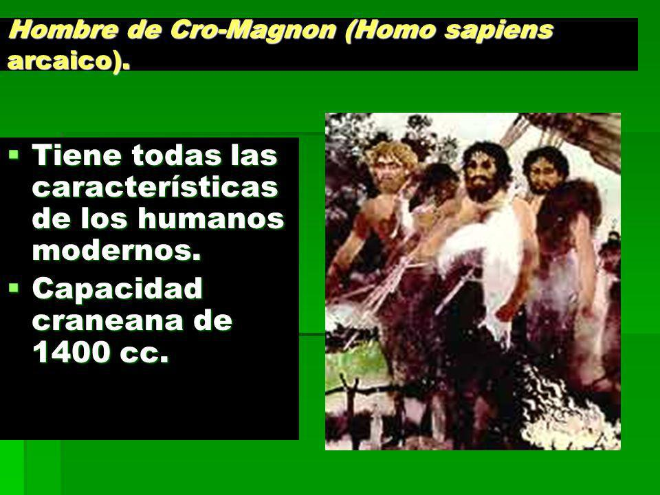 Hombre de Cro-Magnon (Homo sapiens arcaico).