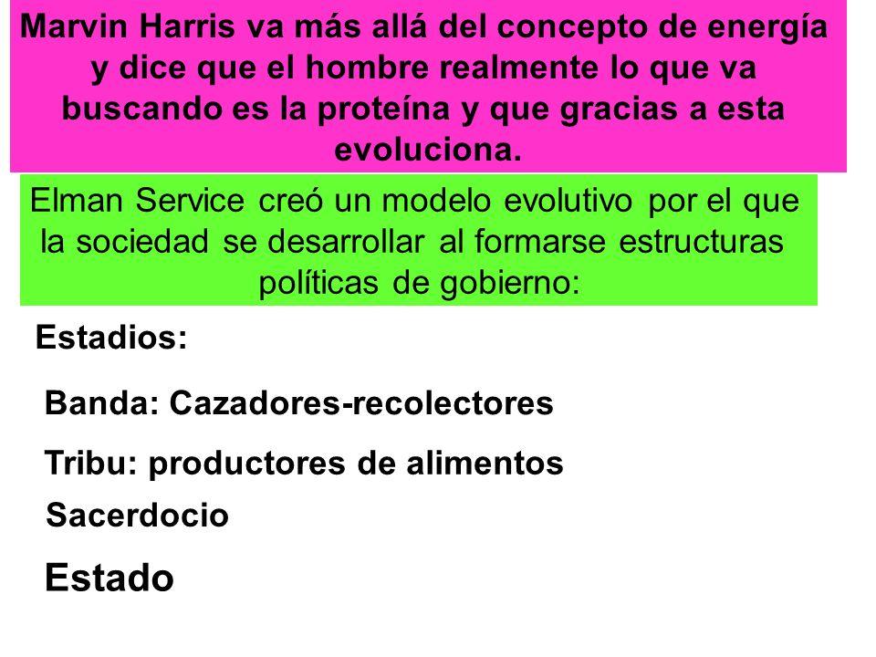Estado Marvin Harris va más allá del concepto de energía