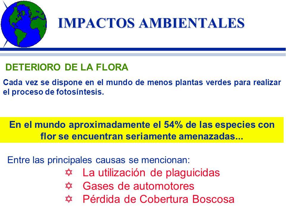 IMPACTOS AMBIENTALES La utilización de plaguicidas