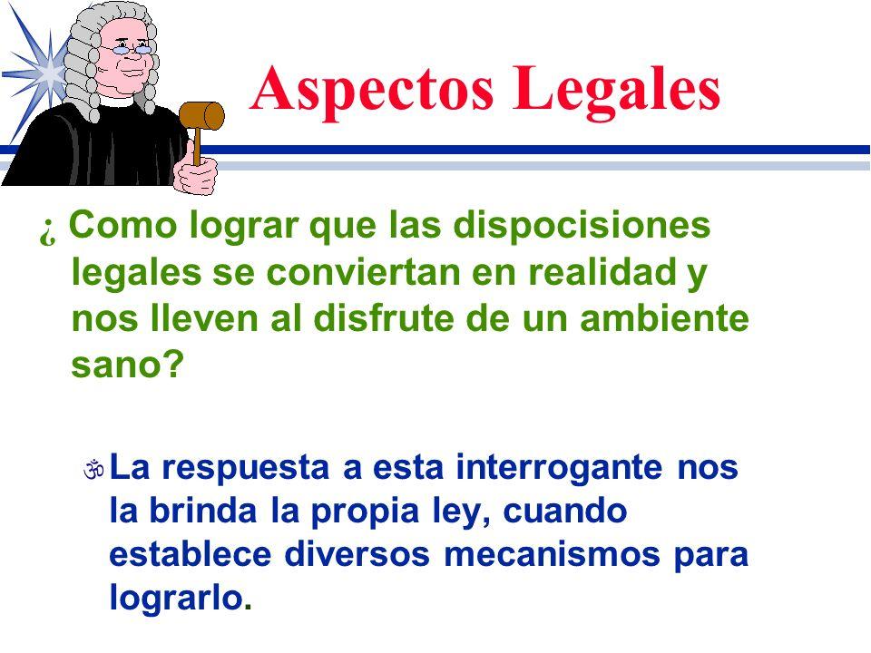 Aspectos Legales ¿ Como lograr que las dispocisiones legales se conviertan en realidad y nos lleven al disfrute de un ambiente sano