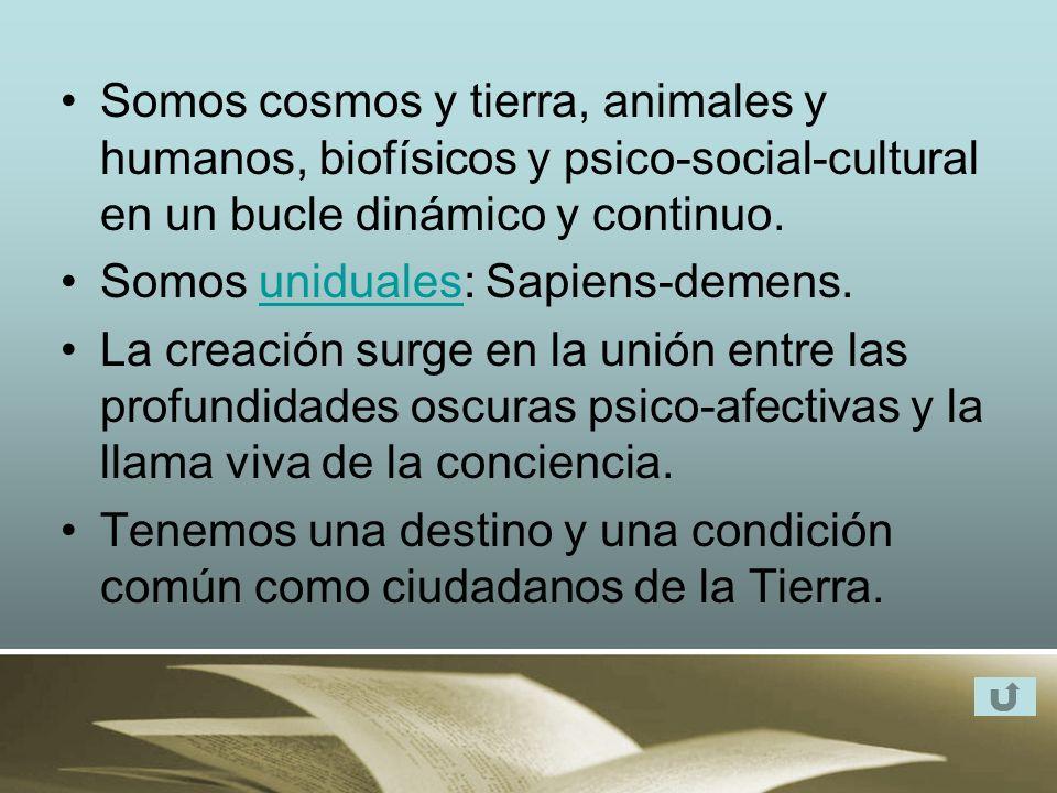 Somos cosmos y tierra, animales y humanos, biofísicos y psico-social-cultural en un bucle dinámico y continuo.