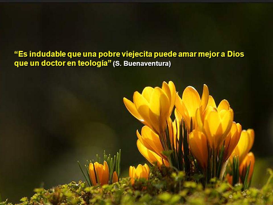 Es indudable que una pobre viejecita puede amar mejor a Dios que un doctor en teología (S.